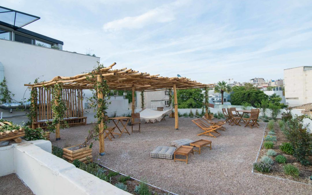 The floral diversity of Ederlezi Boutique Hotel's roof garden