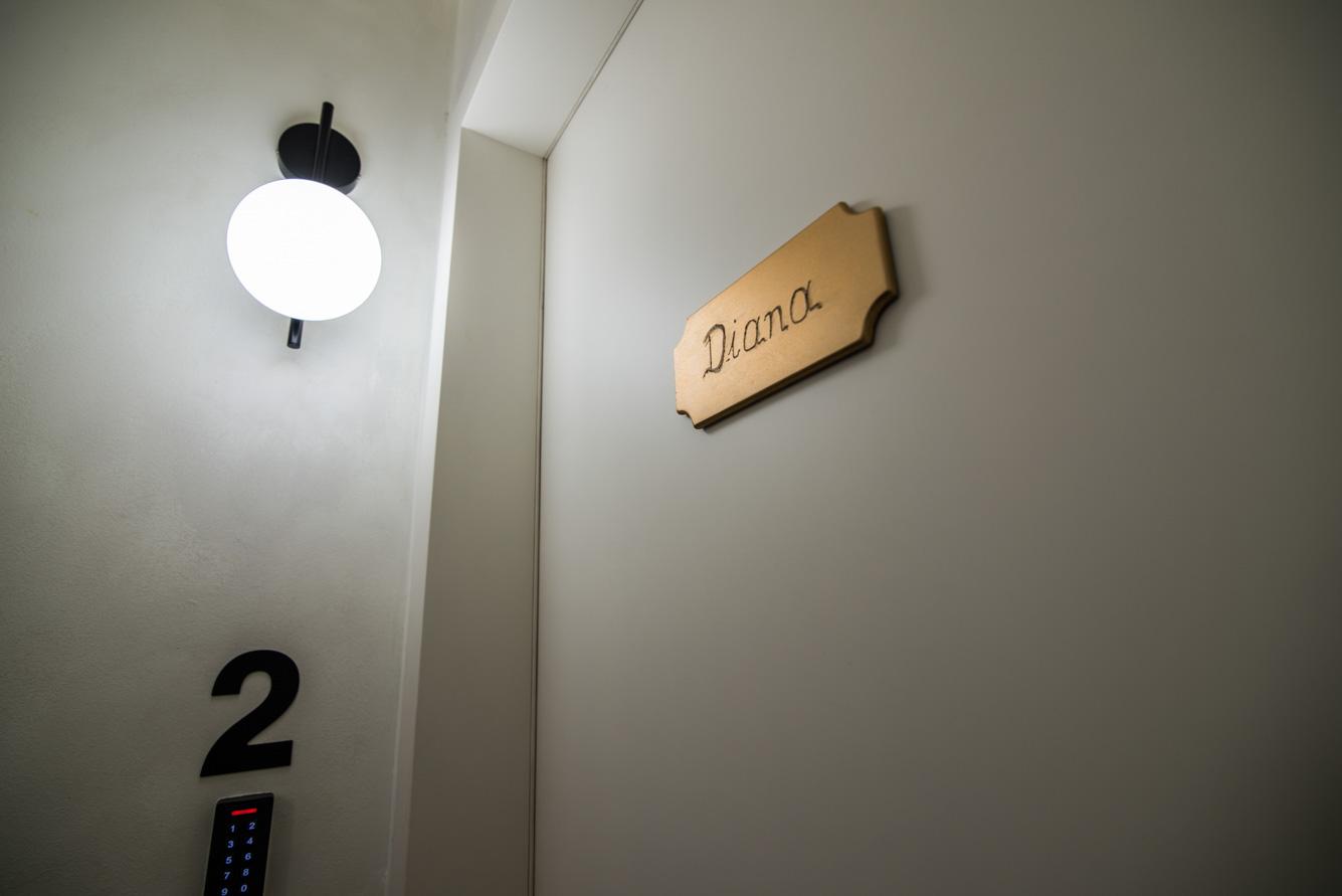 ederlezi-zoubourlou-diana-6